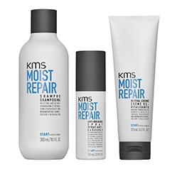 KMS - Moistrepair